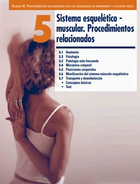 sistema esqueletico muscular